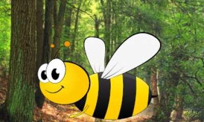 Shepparton Library - Backyard Beekeeping and Bee-Friendly Planting